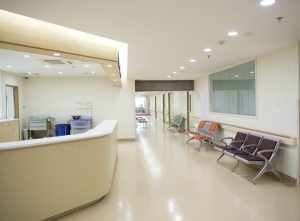 UBM Commercial Janitorial and Cleaning Services - Medical